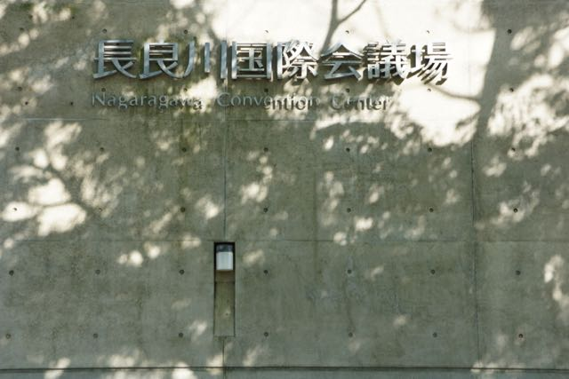 DSC03447.jpg
