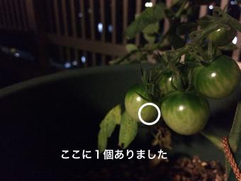 IMG_2133_Fotor.jpg