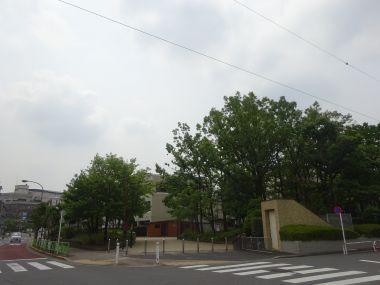mini_DSC01700.jpg