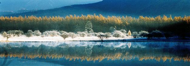 14年前の小田代ヶ原