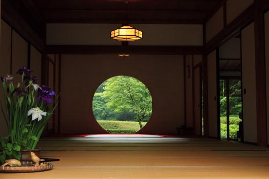 紫陽花んぽ(明月院)2015