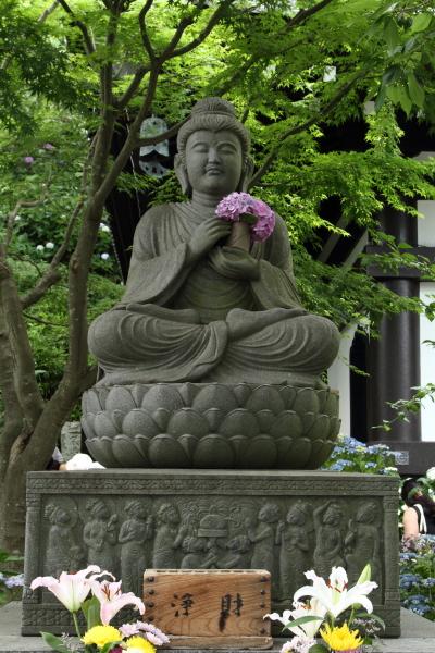 紫陽花写んぽ(長谷寺)2015