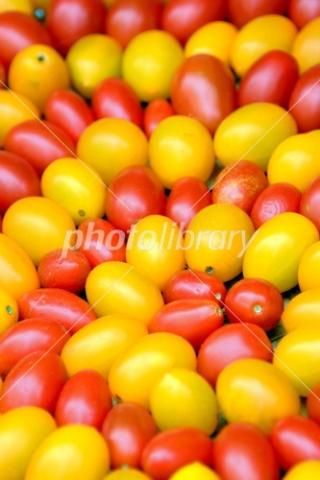 3762280 渦巻くプチトマト