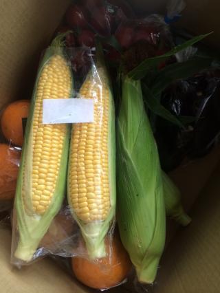 corn2_convert_20150630233203.jpg