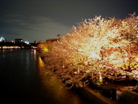 月ヶ瀬 梅餅 (6)