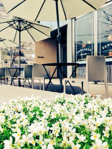 압구정(狎鴎亭)もすっかり春の雰囲気