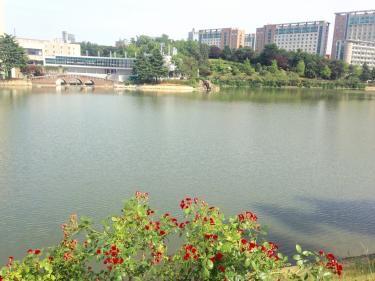 建国大学の湖