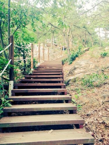 금성산(錦城山)という山へ登ってみる事に。