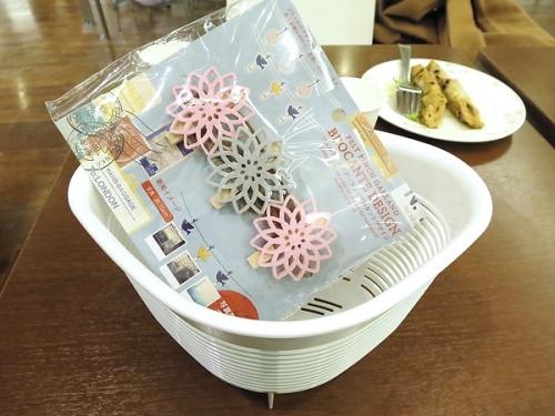 カトレア鉢1