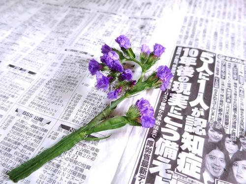 バレンタインハート_花材6