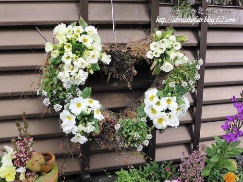 庭の花達3_ジュリアンハート
