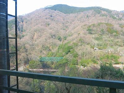 IMG_7561-fujiyaa.jpg
