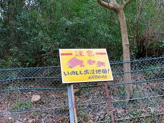 IMG_7576t-fujiyaa.jpg