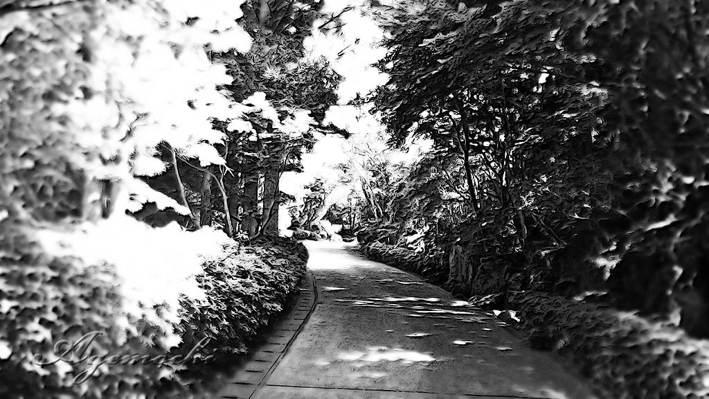 kura_entrance.jpg
