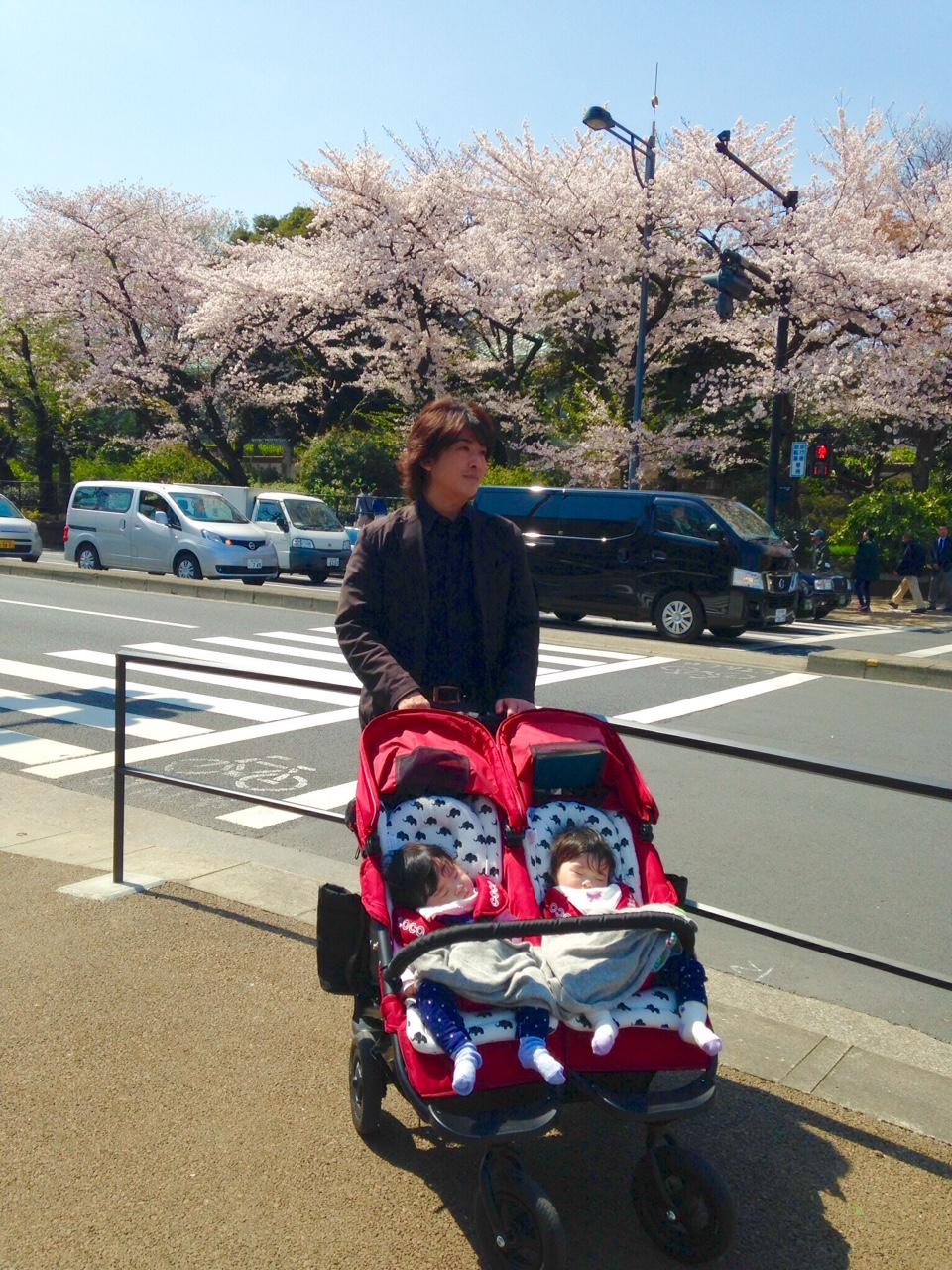 桜の中のお散歩