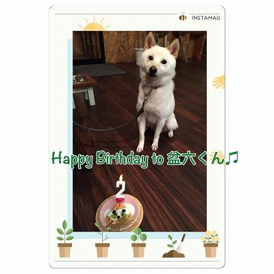 盆六くん/BirthdayBoyくん♪♪