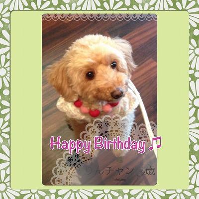 りんチャン/BirthdayGirl♪♪