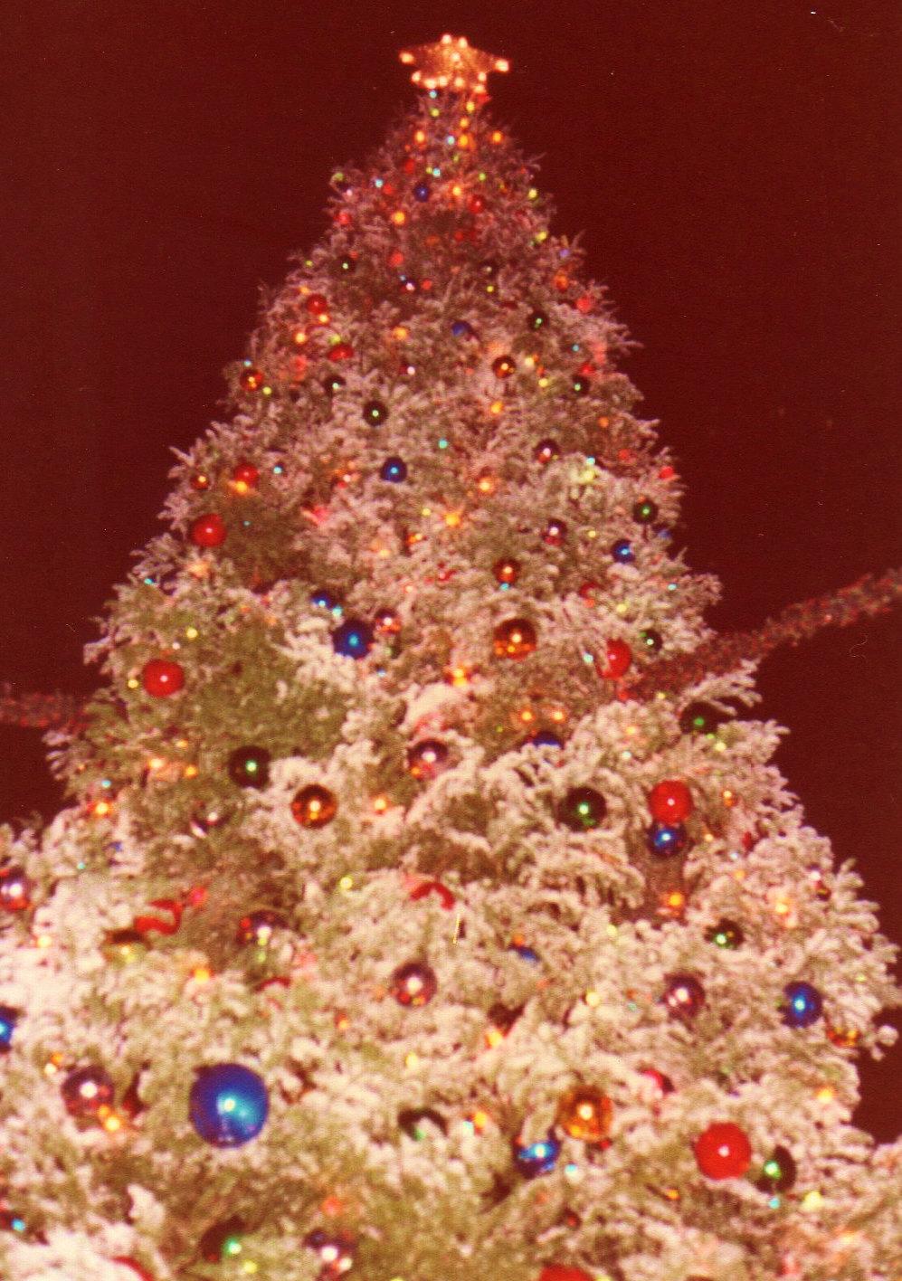 ディズニーランドクリスマスパレード②(1983年12月)