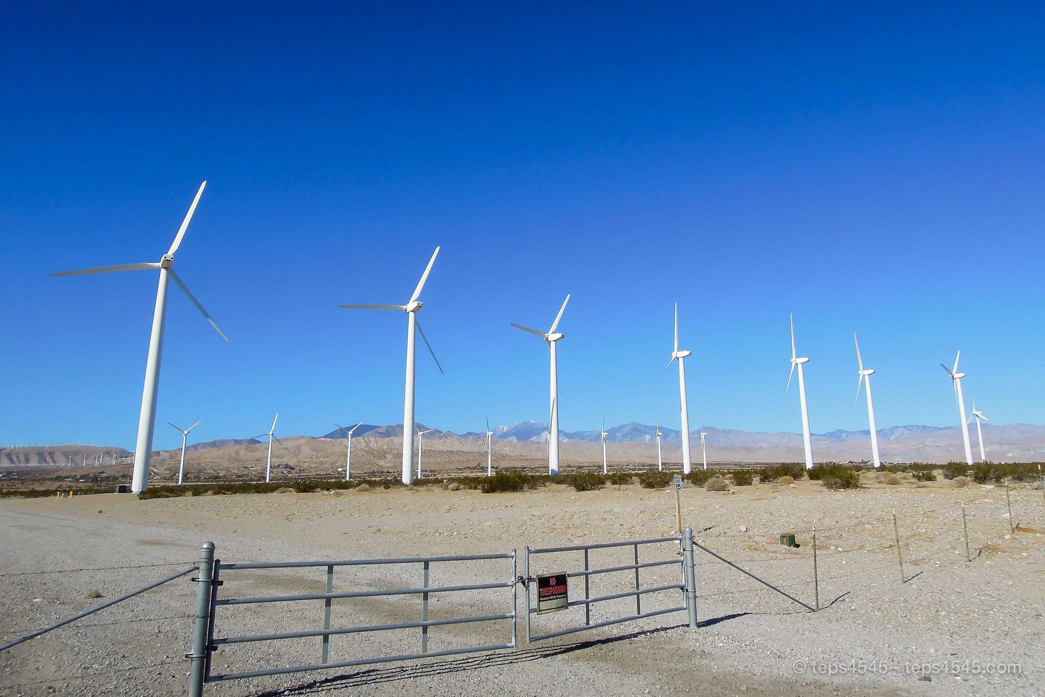 ジョシュアツリー凄まじい数の風車が見られます