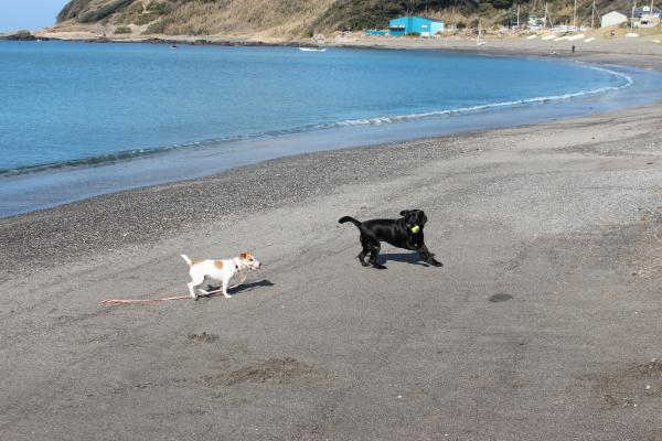 長浜海岸3