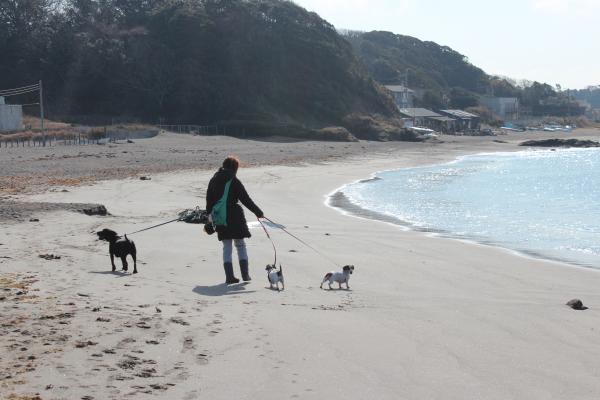 長浜海岸8