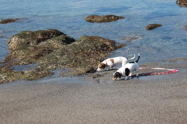 長浜海岸9