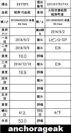2013837537XX.jpg
