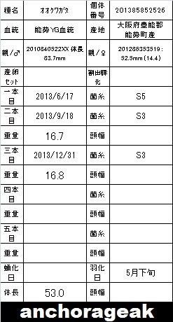 201385852526.jpg