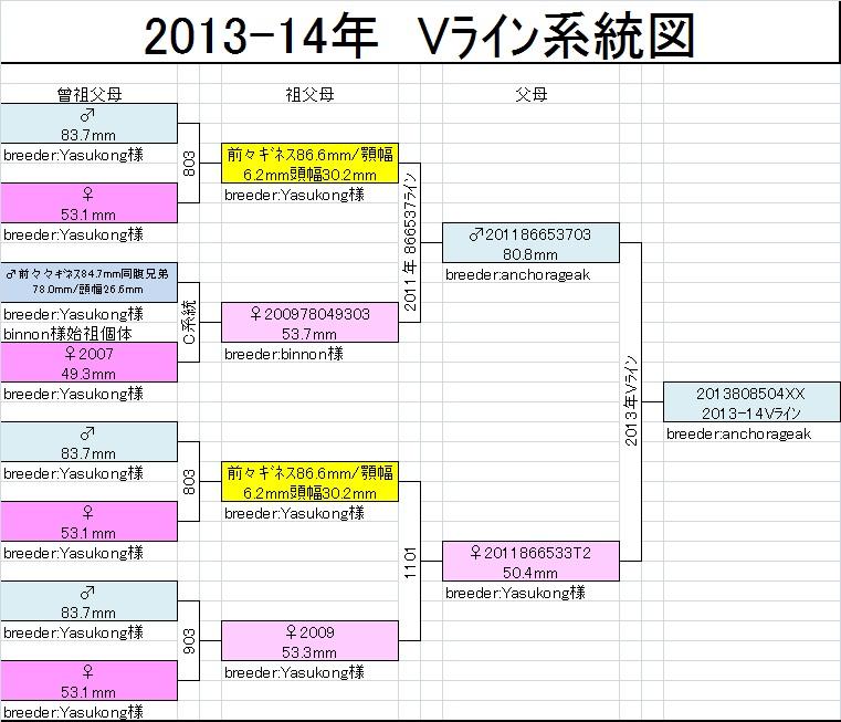 Vライン系統図