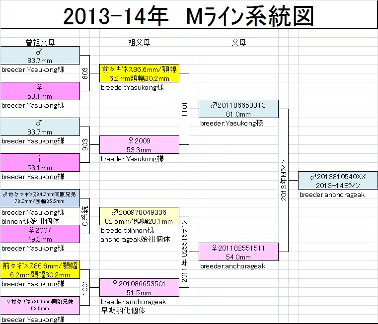 Mライン系統図