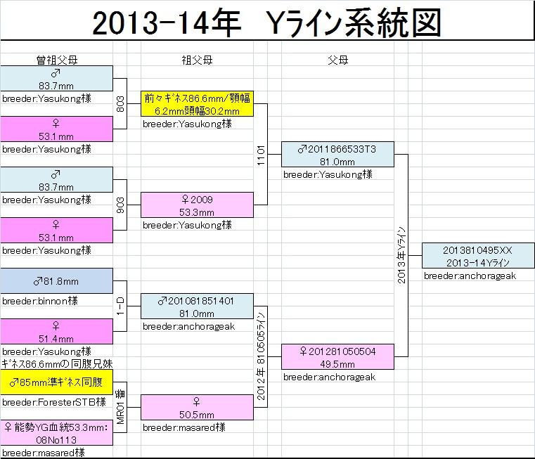 Yライン系統図