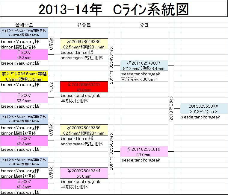 Cライン系統図