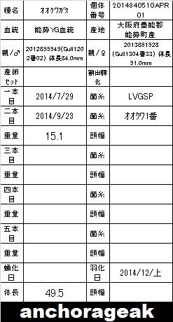 1F 2014840510APR01 Card