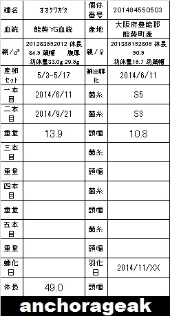 2C 201484550503 Card