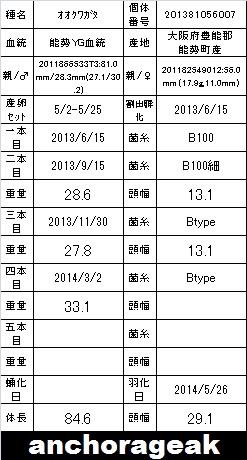 E07 846 Card