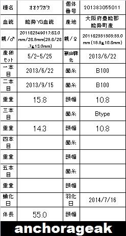 3A 201383055011 Card