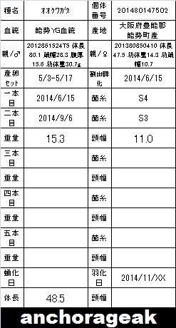 3B 201480147502 card