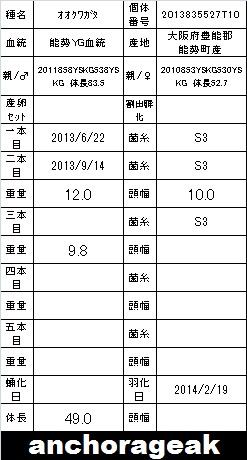 4A 2013835527T10 Card