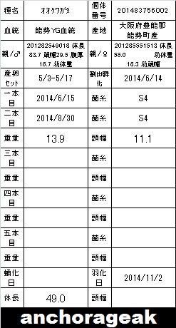 4C 201483756002 Card