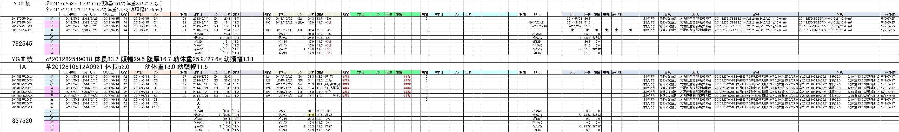 個体管理表1