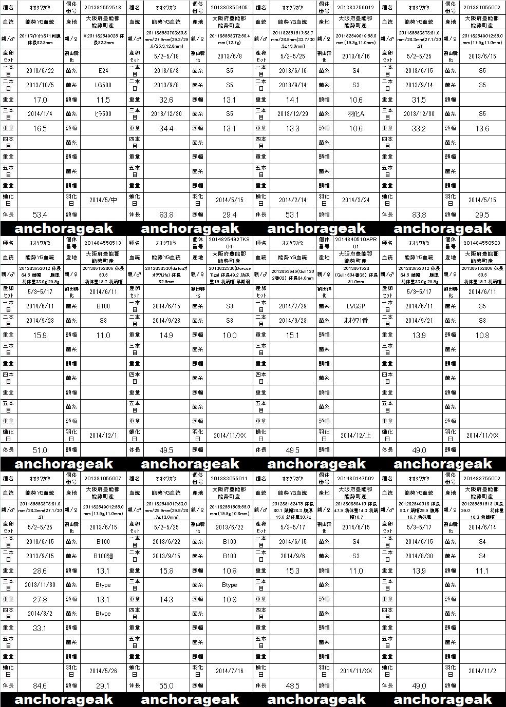個体管理表 ラベル2