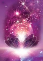 solar-violet-flame-513x720.jpg