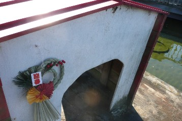 20141218白鳥小屋掃除 (3)