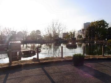 20150305白鳥の池前広場プランター設置 (4)