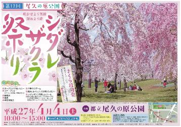 尾久の原公園 シダレザクラ祭り(1)