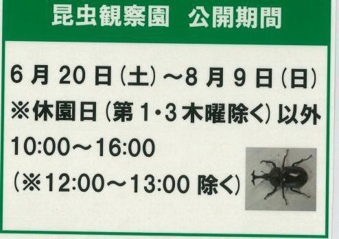 昆虫観察園公開期間