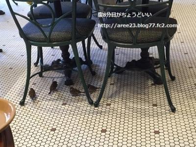 ユニバーサル・スタジオ・ジャパンの旅~2日目~⑨