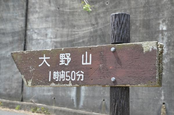 DSC_6353.jpg