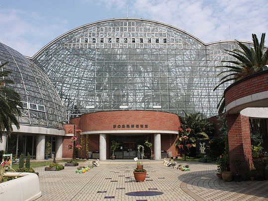 夢の島植物館 Ⅱ