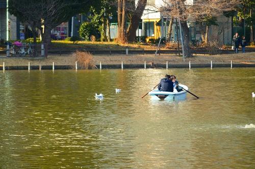 不忍の池の住人達 075